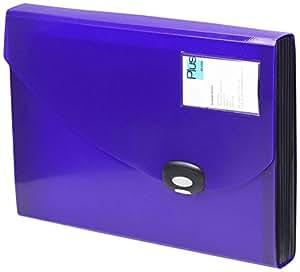 Rapesco - Carpeta archivadora tipo acordeón (tamaño A4, 13 compartimentos), color morado