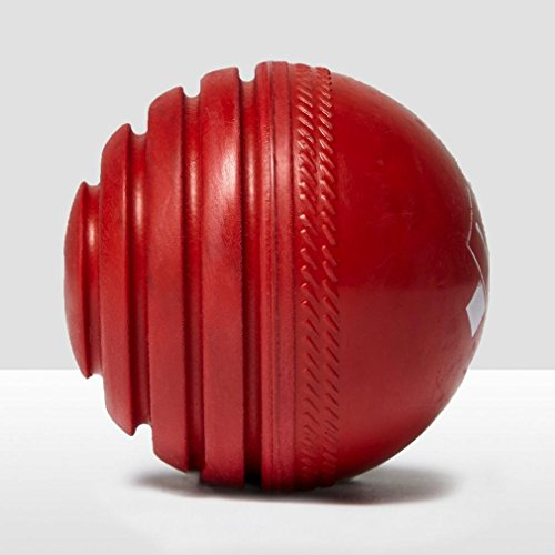 (Gray Nicolls Wobbleball Outdoor Red Training Ball)