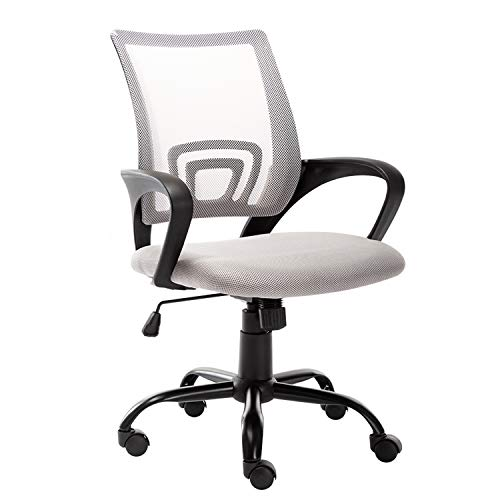 Bonzy Home Office Chair Ergonomic Mesh Desk Chair Computer Chair Lumbar Support Modern Adjustable Rolling Swivel Chair (Gray)