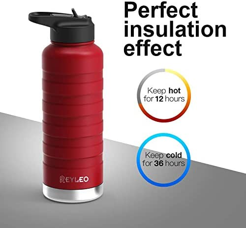 REYLEO Vacuum Insulated Stainless Standard product image