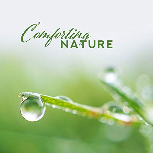 Comforting Nature: Deep Relaxation, 15 Nature Sounds to Rest