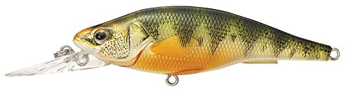 LIVE TARGET Livetarget Yellow Perch Crankbait, Medium