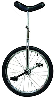 "Action 20X1.75"" Chrome Unicycle"