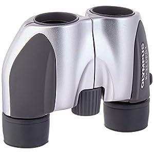 Olympus Roamer 8×21 DPC I Binocular (Silver)