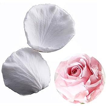 Rose Pétale Silicone Veiner