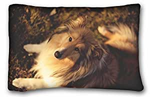 Custom ( Animals nature pelicans birds sunset ) Custom Zippered Pillow Case 20x30 inches(one sides) from Surprise you suitable for Twin-bed PC-Green-33272
