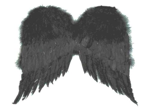 Dark Fairy Wings (Forum Novelties Women's Large Feather Costume Wings, Black, One Size)