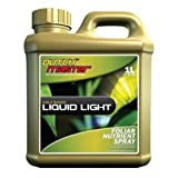 Dutch Master Gold Liquid Light, 1 Liter