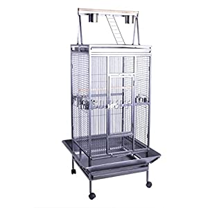 play top cage