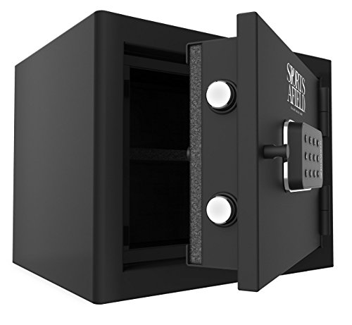 Fire Rated Gun Safe (Sports Afield SA-ES01 Home and Office Fire Safe, 12x15)