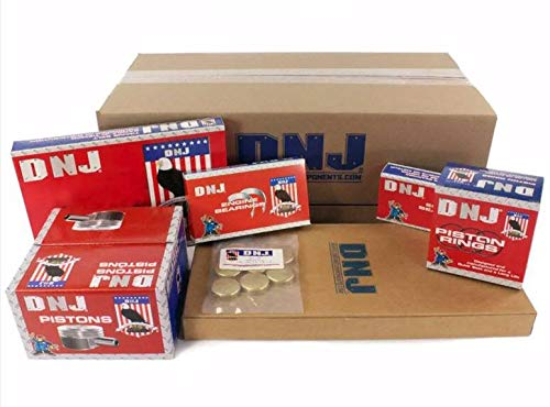 DNJ EK290M Master Engine Rebuild Kit for 1988-1995 / Honda/Civic, Civic del Sol, CRX / 1.5L / SOHC / L4 / 16V / 1493cc / D15B2, D15B7 (91 Honda Civic Engine)