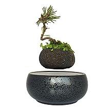 Magnetic Levitation Pot Plant Pots Floating Bonsai Tree Garden Gifts for Men (volcanic stone pot)