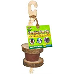 Ware Manufacturing All Natural Small Pet Foraging Fun Toy