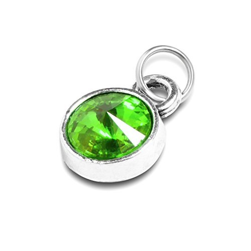 IMEIM Jewelry Extral Birthstone Charm for Necklace Bracelet Custom Small Pendant (August)