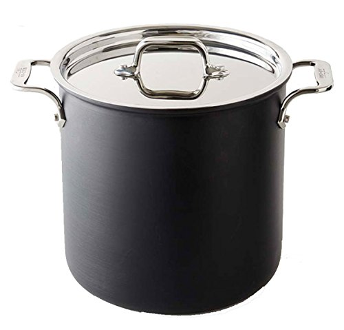 8 quart pot for induction stove - 5