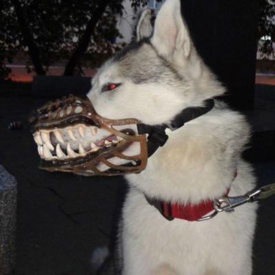 werwolf maulkorb