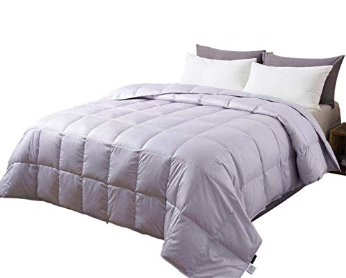 Confibona Lightweight 100% Natural Goose Down Comforter Blanket for Summer Warm Weather,Size California/Oversized King,750 Fill Power,Machine Washable,Super Soft Cotton Shell with No Sound,Light Gray (Best Down Comforter For Warm Weather)