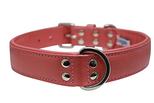 (Leather Dog Collar, Padded, Double Ply, 26