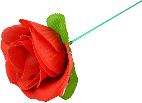 Allure*love 2 Pcs Stage Close-up Magic Trick Torch To Rose