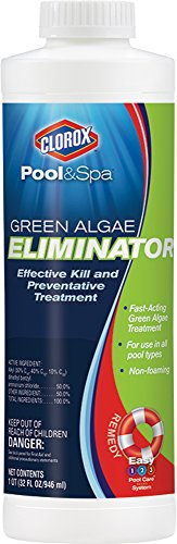 clorox-poolspa-green-algae-eliminator-1-quart-42032clx