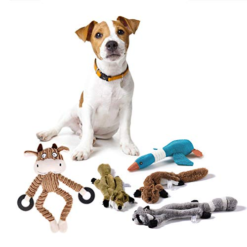MEGA PET Funny Pack 5 Squirrel Dog Squeak Toys Stuffingless Dog Toy Kids Toys and Pet Products Tug-of-war Toy for Dog Dog Simulation Animal Skin Toys Indestructible Dog Toys for Large Breed Dog Chew