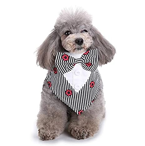 Dlkjsikogklsdgs Accesorios para Mascotas, Gatos y Perros, moño Hermoso y Lindo de Dos Colores
