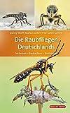 Die Raubfliegen Deutschlands: Entdecken – Beobachten – Bestimmen (Quelle & Meyer Bestimmungsbücher)