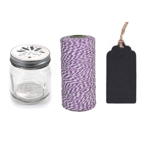 Dress My Cupcake 12-Pack Favor Kit, Includes Vintage Glass Mason Jar Sippers and Twine/Chalkboard Gift Tag, Purple