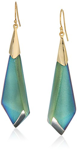Alexis Bittar Lucite Earrings (Alexis Bittar Fall 2017 Faceted Wire Opalescent Drop Earrings)