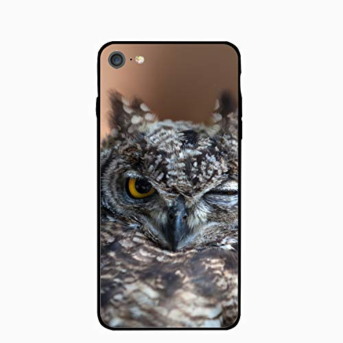Owl Face Beak Feathers Wink Bird Floral Print PC Cellphone Case for iPhone 6 Plus
