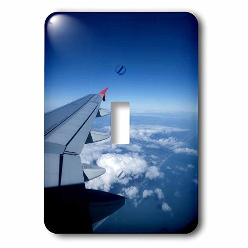 3dRose LLC lsp_97982_1 Spirit Airplane Landing in Orlando Florida Single Toggle - Florida In Outlets Orlando