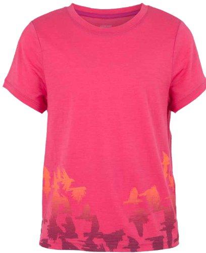 Icebreaker Kids t-Shirt /à Manches Courtes Tech t Lite /à Manches Courtes pour Homme Flock