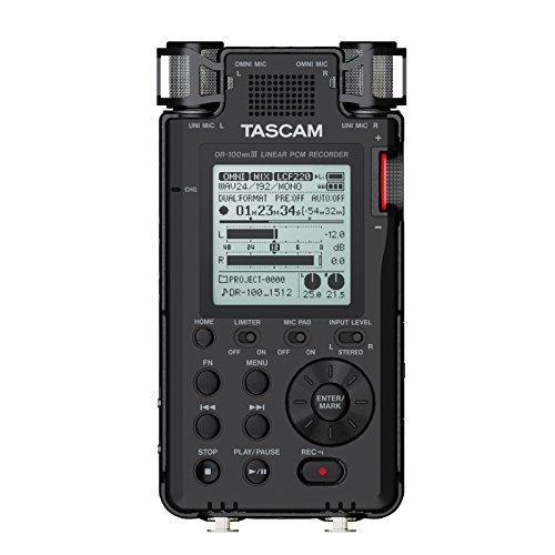 Tascam DR-100MKIII   Handheld Stereo Portable Digital