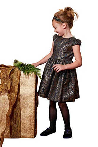 Chasing Fireflies Girls Royal Brocade Dress -