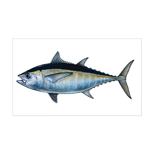 CafePress - Blackfin Tuna - Rectangle Bumper Sticker Car Decal