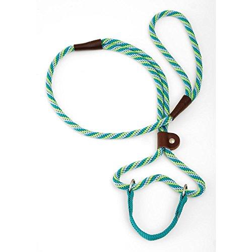Mendota Products, Inc. Dog Walker 3/8 Inch x 6 Ft Seafoam