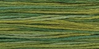 product image for Weeks Dye Works Over-Dyed 6-Strand Embroidery Floss, 5 Yds: Lucky