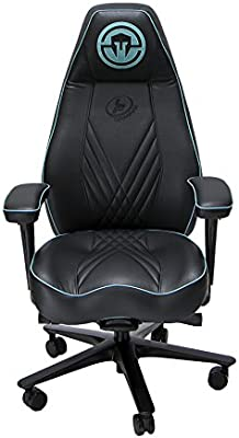 Brilliant Lf Gaming Stealth Gaming Chair Pc Mac Linux Amazon Com Pdpeps Interior Chair Design Pdpepsorg