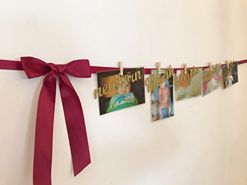 First Birthday Decorations-Monthly Milestone Photo banner for Newborn to 12 months.Perfect for 1 Year old Celebration, Baby Shower Gift (Wine)