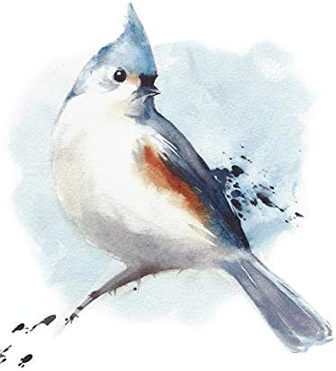 Amazon Com Tufted Titmouse Sitting On The Branch Watercolor Illustration A 90683 12x18 Art Print Wall Decor Travel Poster Posters Prints