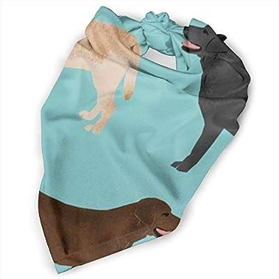 Osmykqe Perro Bandana Lindo Labradors Laboratorio Negro Mascotas Perros Baberos Trangle Head Bufanda para Gatos Pupply Big Dog Suave