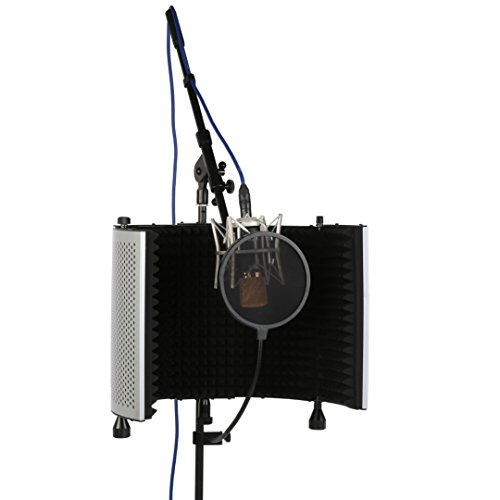 Buy mic for recording guitar and vocals