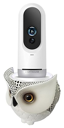 Lighthouse Numbers - FitSand Owl Statue Crafted Stand Station Guard for Lighthouse Number 1 Rated AI Home Security Camera