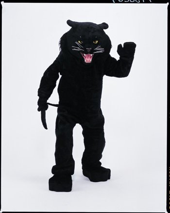 [PANTHER BLACK MASCOT COMPLETE] (Panther Costumes)