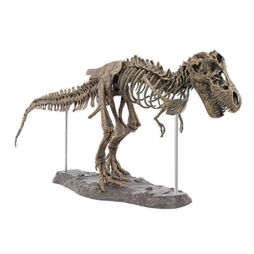 Nuxn Giant Dinosaur Skeleton Model Kit Tyrannosaurus for sale  Delivered anywhere in Canada
