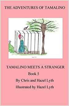The Adventures of Tamalino: Bk. 5: Tamalino Meets a Stranger