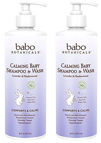 Babo Botanicals Calming Baby Shampoo and Wash (Pack of 2) Aloe Vera, Lavender Oil, Matricaria Flower, Wildcrafted Watercress, Kudzu, Meadowsweet, Carrageenan and Gluconolactone, 15 fl. oz. each by Babo Botanical Naturals