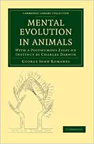 amazon evolution paper