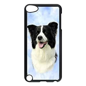 Custom Border Collie Dog Hard Case Clip on Back Cover for Ipod touch5