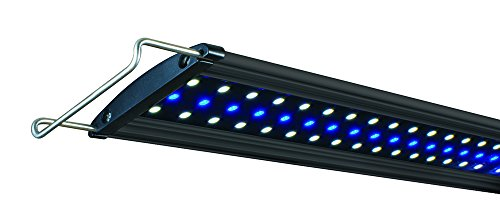 Lifegard Aquatics Led Lights